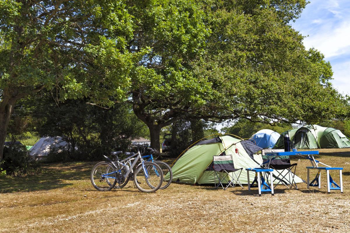 Oferta con reserva directa Camping San teodoro La Cinta